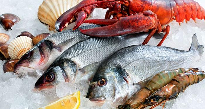 Từ vưng các loại hải sản